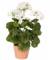 Kunstplant witte geranium 35 cm trend