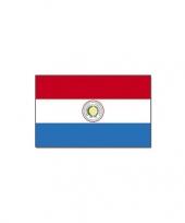 Landenvlag paraguay trend