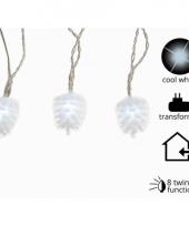 Led verlichting dennenappel koud wit knipper 24 lampjes trend