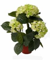 Lichtgroene hortensia kunstplant 36 cm trend