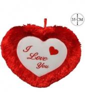 Liefdes kado rood kussen 35 cm trend