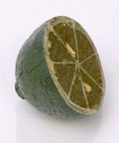 Limoen kunst trend