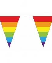 Luxe regenboog vlaggetjes voor binnen en buiten trend 10086632