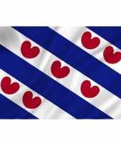 Luxe vlag friesland fryslan 70 x 100 cm trend