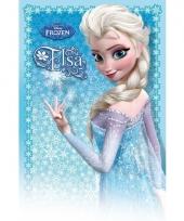 Meisjes poster anna elsa frozen trend