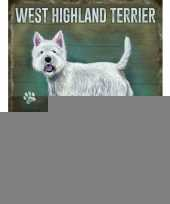Metalen plaat west higland terrier trend