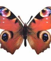 Metalen vlinder pauwenoog 25 x 20 cm trend