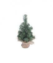 Mini kerstboom groen 30 cm trend