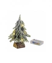 Mini kerstboompje met lichtjes 20 cm trend