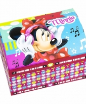 Minnie mouse sieradenkistje gekleurd trend
