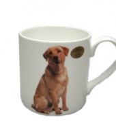 Mok labrador hond trend