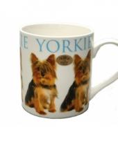 Mok yorkshire terrier hond trend