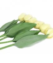 Nep tulpen set creme 6 stuks trend