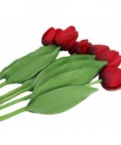 Nep tulpen set rood 6 stuks trend