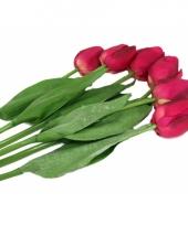 Nep tulpen set roze 6 stuks trend