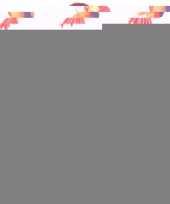 Opblaas dieren papegaaien 60 cm trend