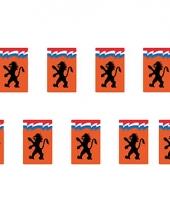 Oranje vlaggenlijn met hollandse leeuw trend