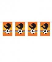 Oranje voetbal slinger leeuw 10 m trend
