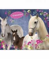 Paarden placemat blauw 43 x 30 cm trend