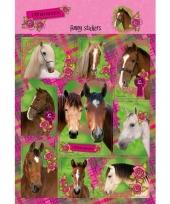 Paarden stickers 10 stuks set 1 trend