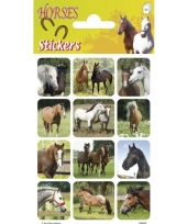 Paarden stickers landschap 3 vellen trend