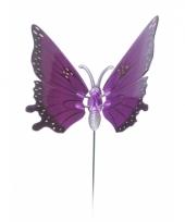 Paarse vlinder op stok 20 cm trend
