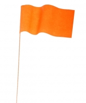 Papieren zwaaivlaggetje oranje trend
