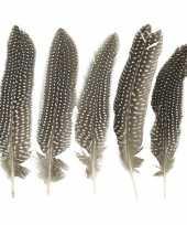 Parelhoen veren 18 cm 5 stuks trend