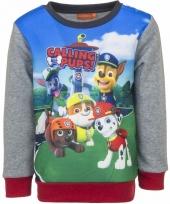 Paw patrol jongens sweater met grijze mouwen trend