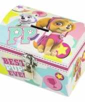 Paw patrol mint roze kinder spaarpot geldkistje 14 x 10 cm trend