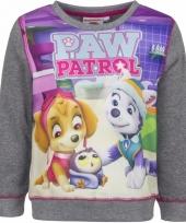 Paw patrol sweater grijs trend