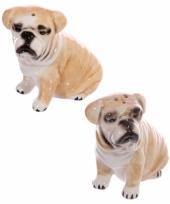 Peper en zout stelletje bulldog trend