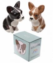 Peper en zout stelletje franse bulldog trend