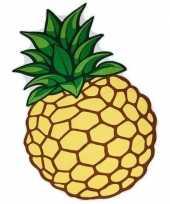 Picknickkleed ananas 120 x 170 cm trend