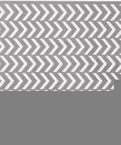 Pijlen visgraat sjabloon voor verfsprays 30 x 30 cm trend