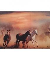 Placemat paarden 3d 28 x 44 cm type 1 trend