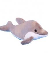 Pluche dolfijn 31 cm trend