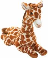 Pluche giraffe knuffel liggend 35 cm trend
