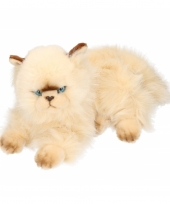 Pluche persische katten knuffel 30 cm trend