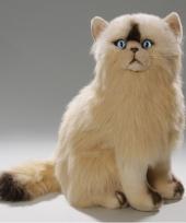 Pluche persische katten knuffel 35 cm trend