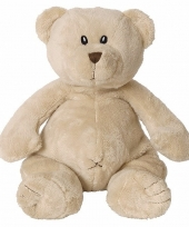 Pluche teddybeer 23 cm trend