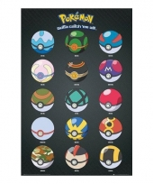 Pokemon poster pokeballs trend