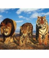 Poster dierenrijk afrika 47 x 67 cm trend 10077211