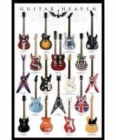 Poster gitaren muziek thema 61 x 91 cm wanddecoratie trend