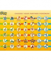 Poster pokemon partners trend