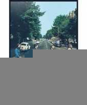 Poster the beatles abbey road 61 x 91 5 cm trend