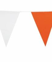 Puntvlaggenlijn ierland 10 m trend