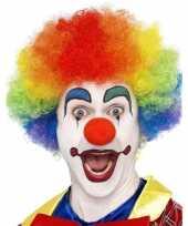 Regenboog clown pruik voor volwassenen trend