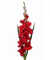 Rode gladiolen kunstbloem trend