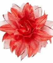 Rode haarbloem met glitters trend 10069888